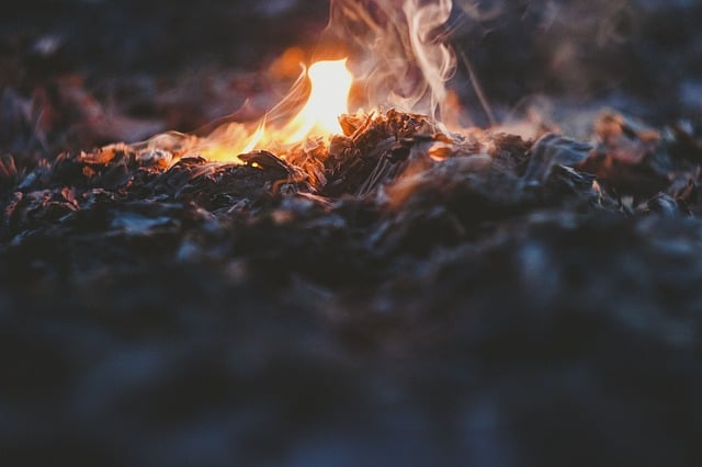 How to Build a Fire [3 Methods]